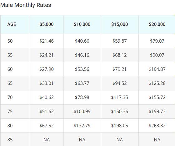 vantis life insurance rates